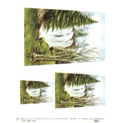 CARTA PER DECOUPAGE CARTA DI RISO 31X42 CAL200/216
